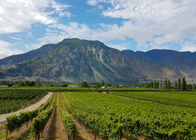 K Mountain Similkameen Treasures Corcelettes Vineyard Keremeos