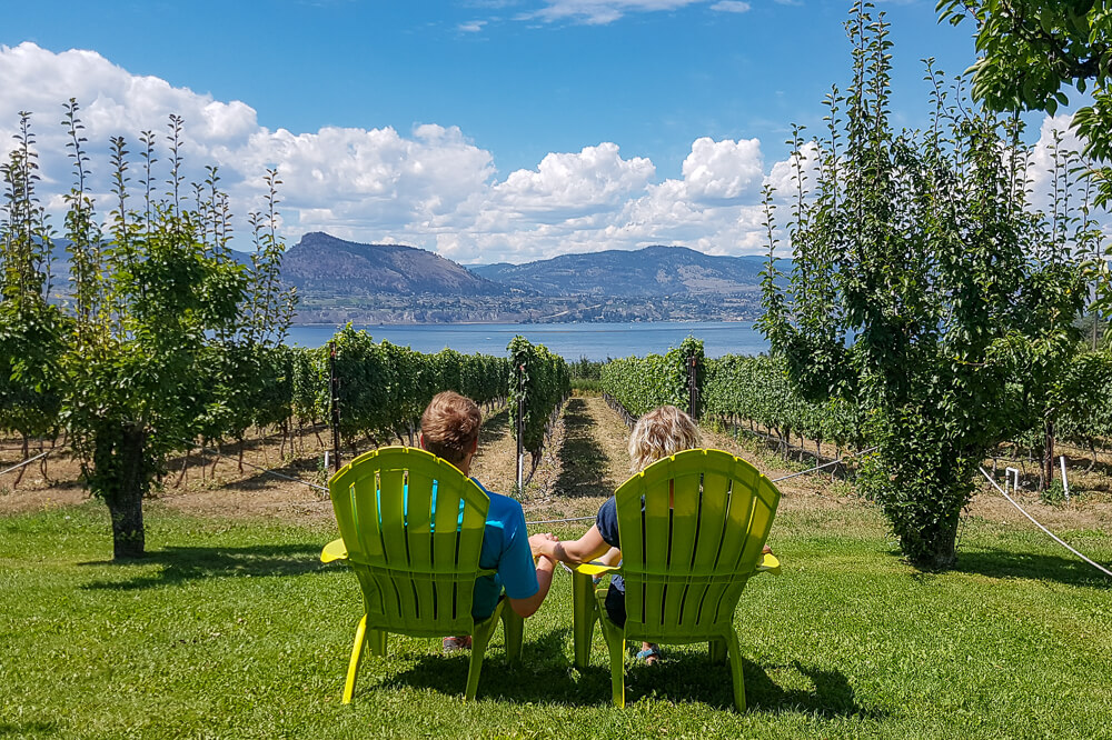 Couple in green chairs viewing vineyard, lake and mountains